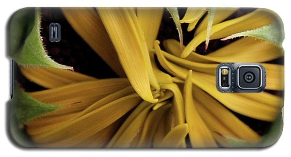 Sunflower Bud Galaxy S5 Case