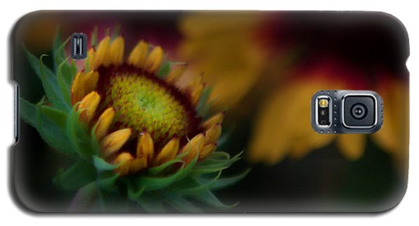 Galaxy S5 Case featuring the photograph Sunflower by Cherie Duran