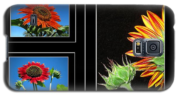 Galaxy S5 Case featuring the photograph Sunflower Collage by Joyce Dickens