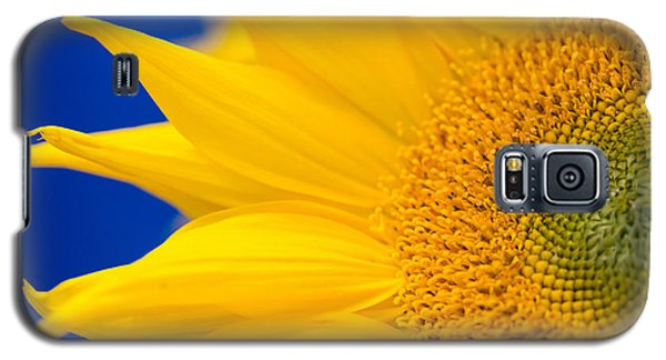 Sunflower Detail Galaxy S5 Case