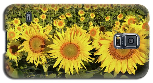 Galaxy S5 Case featuring the photograph Sunflower Faces by Ann Bridges