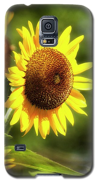 Galaxy S5 Case featuring the photograph Sunflower Field by Christina Rollo