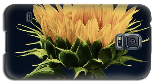 Galaxy S5 Case featuring the photograph Sunflower Foliage And Petals by Chris Berry