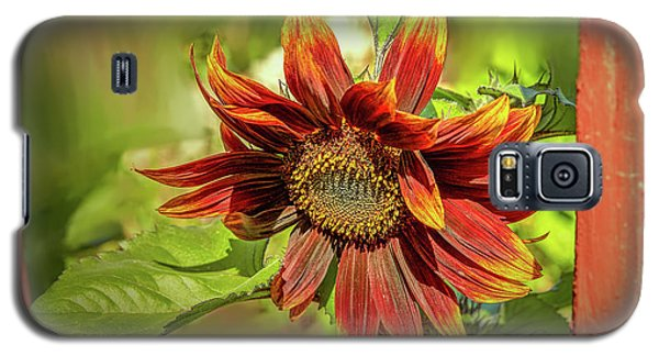 Sunflower #g5 Galaxy S5 Case