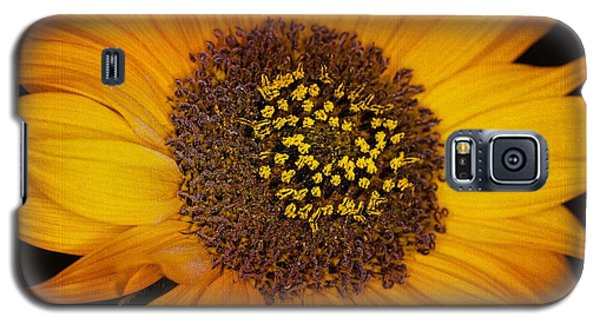 Sunflower Glory Galaxy S5 Case