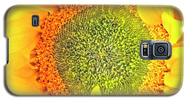 Sunflower Hdr Galaxy S5 Case