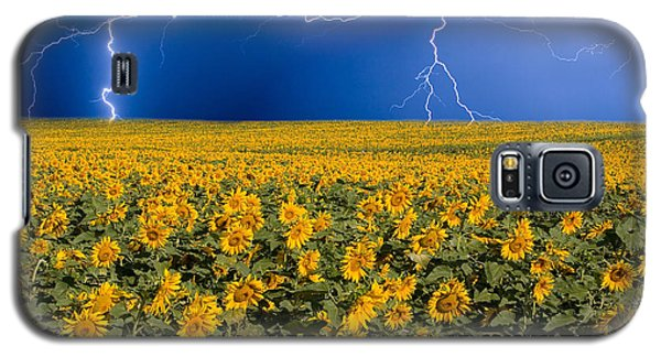 Galaxy S5 Case featuring the photograph Sunflower Lightning Field  by James BO  Insogna