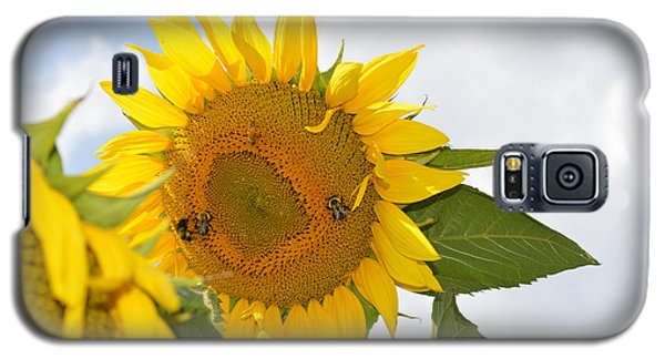 Galaxy S5 Case featuring the photograph Sunflower by Linda Geiger