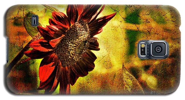 Sunflower Galaxy S5 Case by Lois Bryan