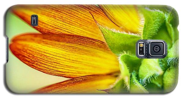 Sunflower Macro 1 Galaxy S5 Case
