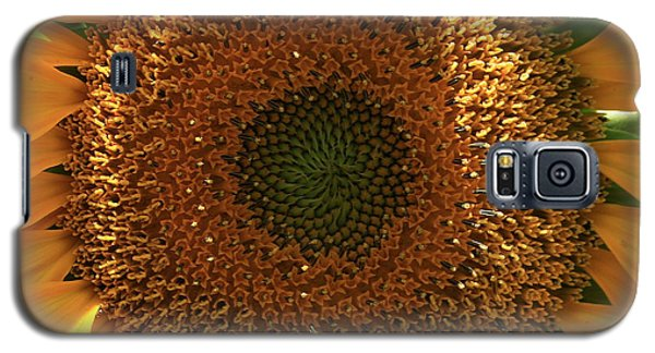Galaxy S5 Case featuring the photograph Sunflower  by Marna Edwards Flavell