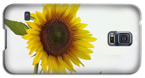 Sunflower Minimal Galaxy S5 Case by Joseph Skompski