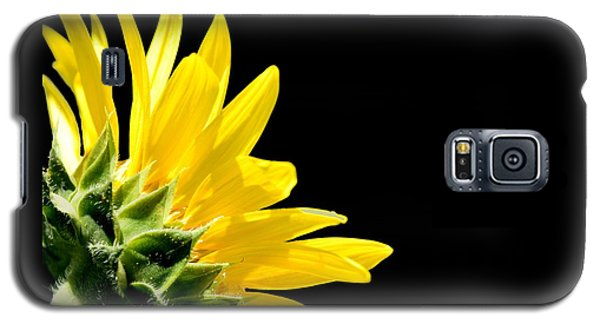 Sunflower On Black Galaxy S5 Case