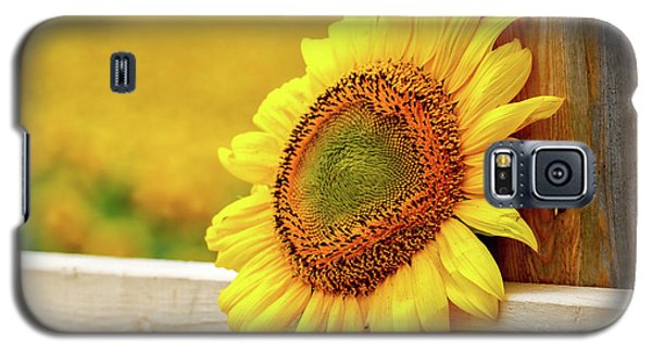Sunflower On The Fence Galaxy S5 Case