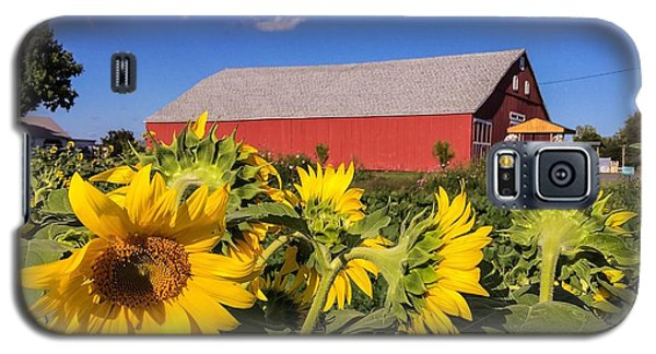Sunflower Red Barn Galaxy S5 Case