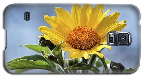 Galaxy S5 Case featuring the photograph Sunflower  by Saija Lehtonen