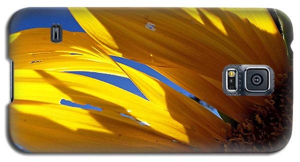 Sunflower Shadows Galaxy S5 Case