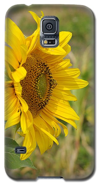 Galaxy S5 Case featuring the photograph Sunflower Show Off by Linda Mishler