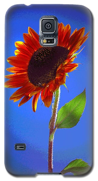 Galaxy S5 Case featuring the photograph sunflower Solitaire by Joyce Dickens