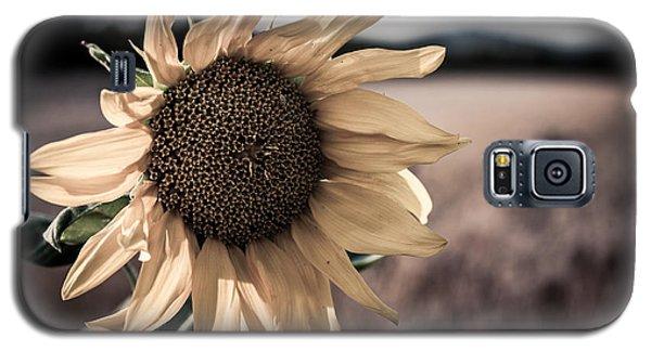 Sunflower Solitude Galaxy S5 Case