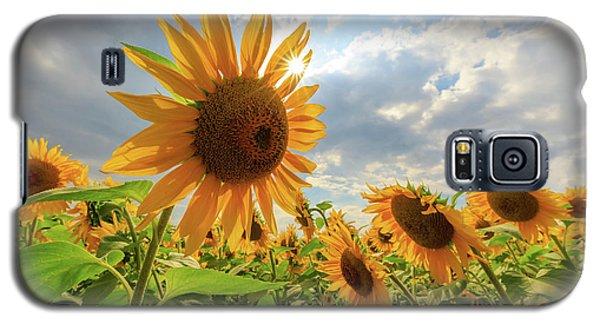 Sunflower Star Galaxy S5 Case