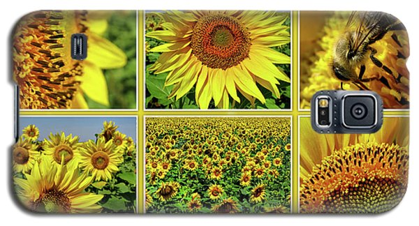 Sunflower Story - Collage Galaxy S5 Case
