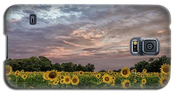 Sunflower Sunrise Galaxy S5 Case