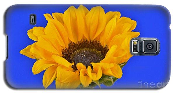 Sunflower Sunshine 406-6 Galaxy S5 Case
