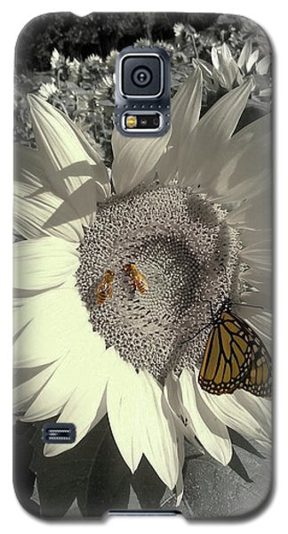 Sunflower Tint Galaxy S5 Case