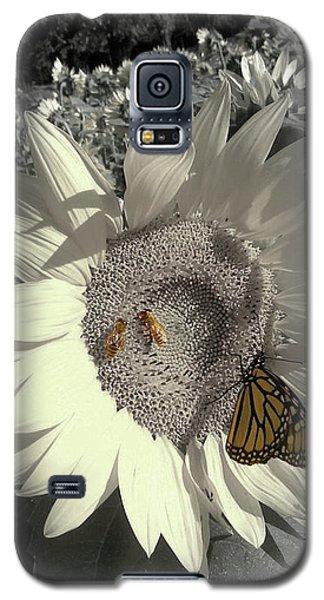 Sunflower Tint Galaxy S5 Case