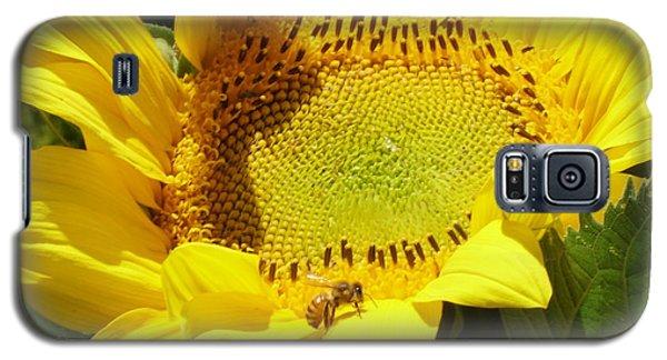 Sunflower With Honeybee Galaxy S5 Case