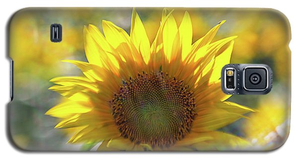 Sunflower With Lens Flare Galaxy S5 Case