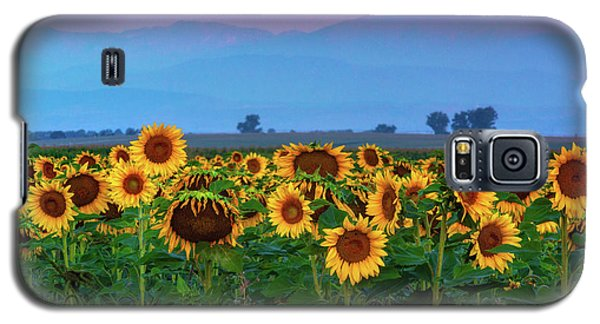 Sunflowers At Dawn Galaxy S5 Case