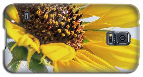 Sunflowers Galaxy S5 Case