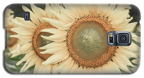 Sunflowers Detail Galaxy S5 Case