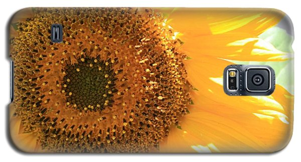Galaxy S5 Case featuring the photograph Sunflowers  by Marna Edwards Flavell