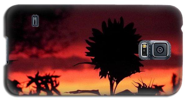 Sunflower's Sunset Galaxy S5 Case
