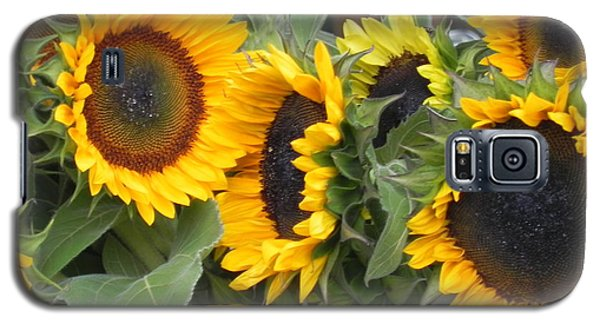 Galaxy S5 Case featuring the photograph Sunflowers Two by Chrisann Ellis