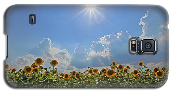 Sunflowers With Sun And Clouds 1 Galaxy S5 Case
