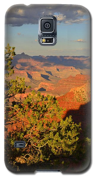 Galaxy S5 Case featuring the photograph Sunkissed Afternoon by Stephen  Vecchiotti