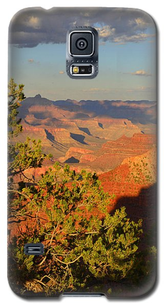 Sunkissed Afternoon Galaxy S5 Case