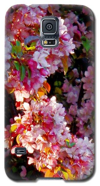 Sunkissed Petals Galaxy S5 Case