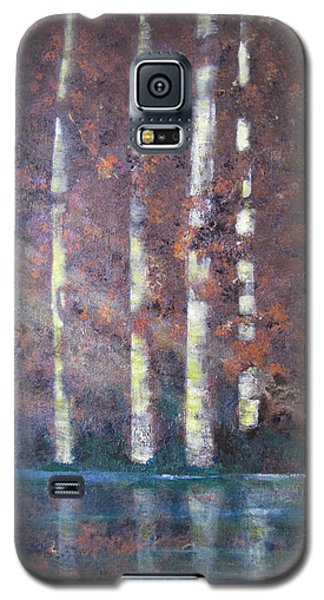 Sunlight And Birch Galaxy S5 Case by Gary Smith