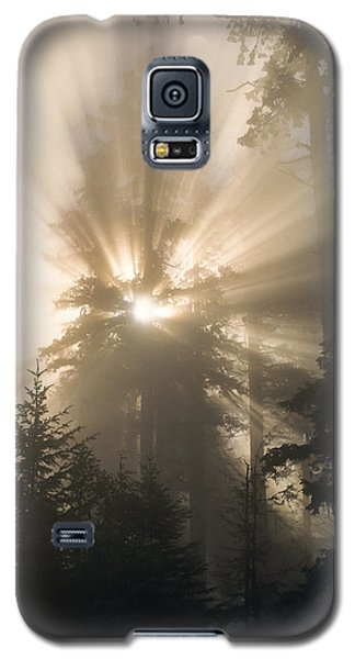 Sunlight And Fog Galaxy S5 Case