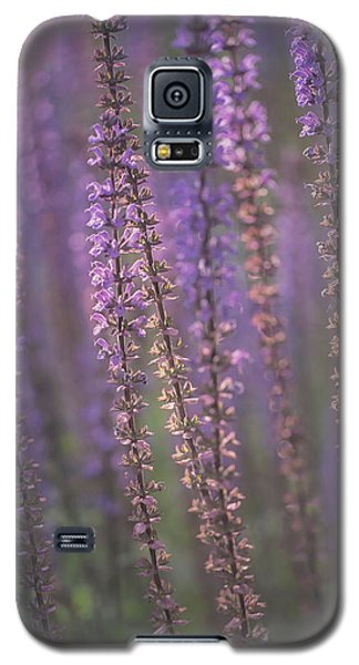 Sunlight On Lavender Galaxy S5 Case