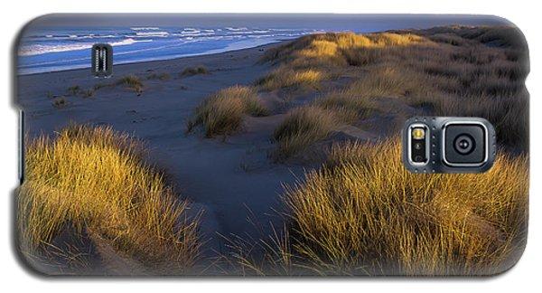 Sunlight On The Beach Grass Galaxy S5 Case