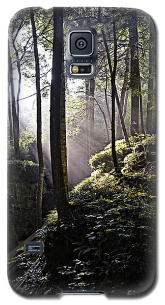 Sunlight Through Trees At Beartown State Park 3129c Galaxy S5 Case