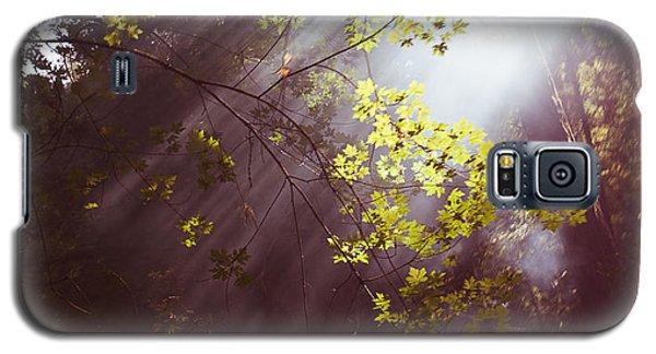 Sunlit Beauty Galaxy S5 Case