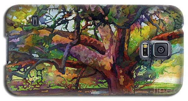 Sunlit Century Tree Galaxy S5 Case by Hailey E Herrera