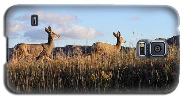 Sunlit Deer  Galaxy S5 Case